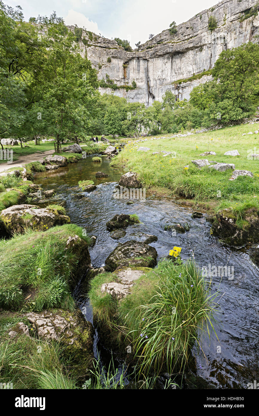 Malham Cove limestone scenery with river that emerges from cliff, Yorkshire Dales, UK - Stock Image