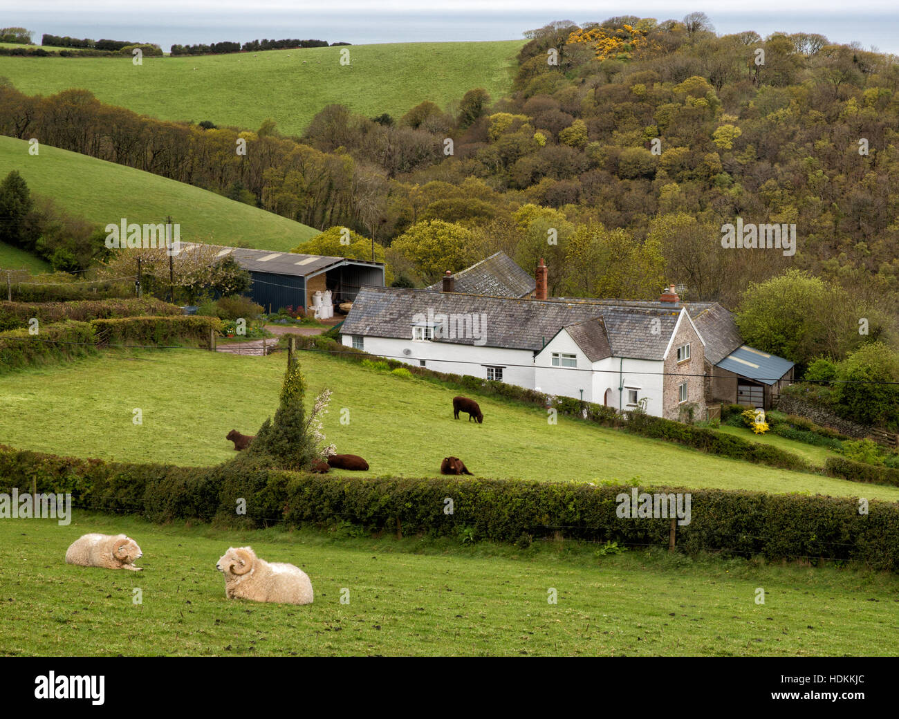 Ash Farm near Porlock in Exmoor where Coleridge reputedly stayed when the Person from Porlock interrupted his writing - Stock Image