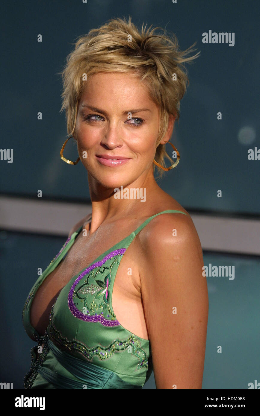 Actress Sharon Stone Arrives For The Premiere Of Her Film Catwoman