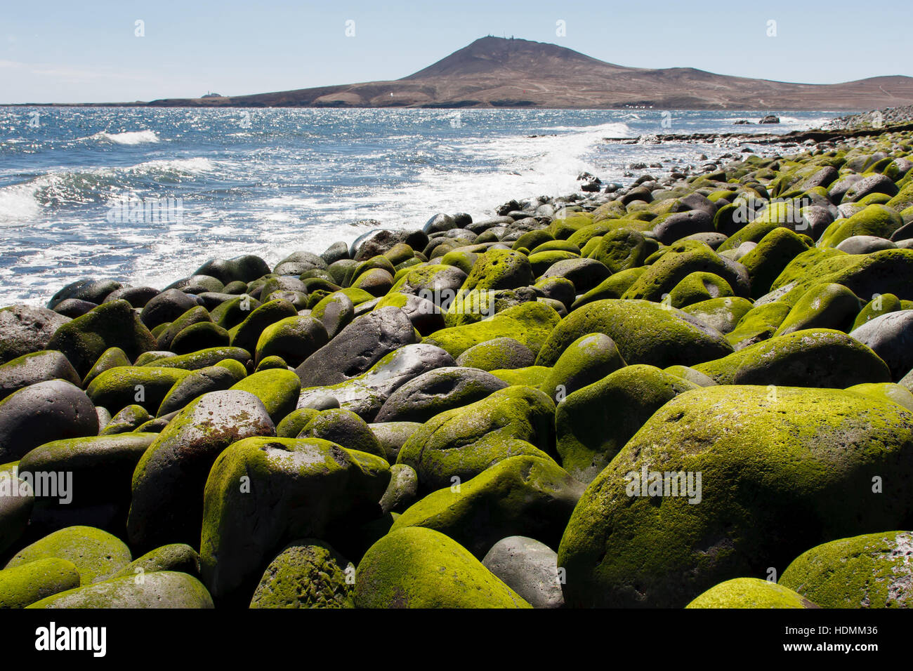 Stony beach. Atlantic coast - Gran Canaria - Stock Image