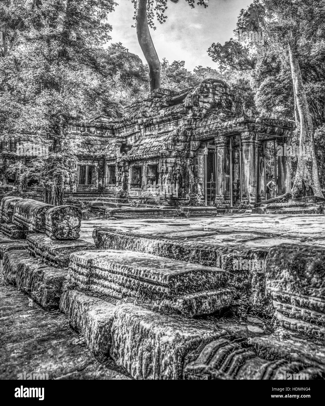 Lithographic-type black and white view of the platform at the East entrance to Ta Prohm temple complex at Siem Reap, - Stock Image