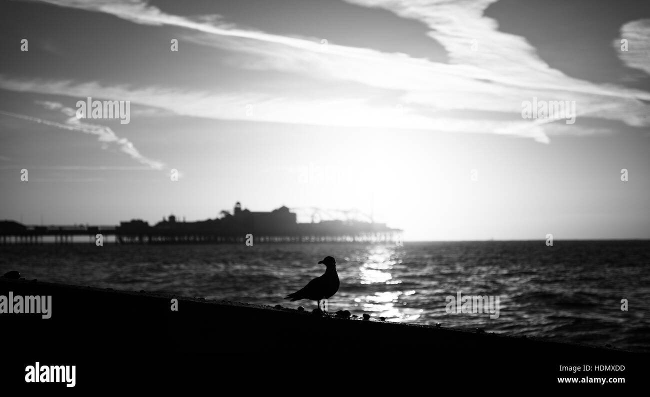 Brighton Beach and Palace Pier seascape in black and white - Stock Image