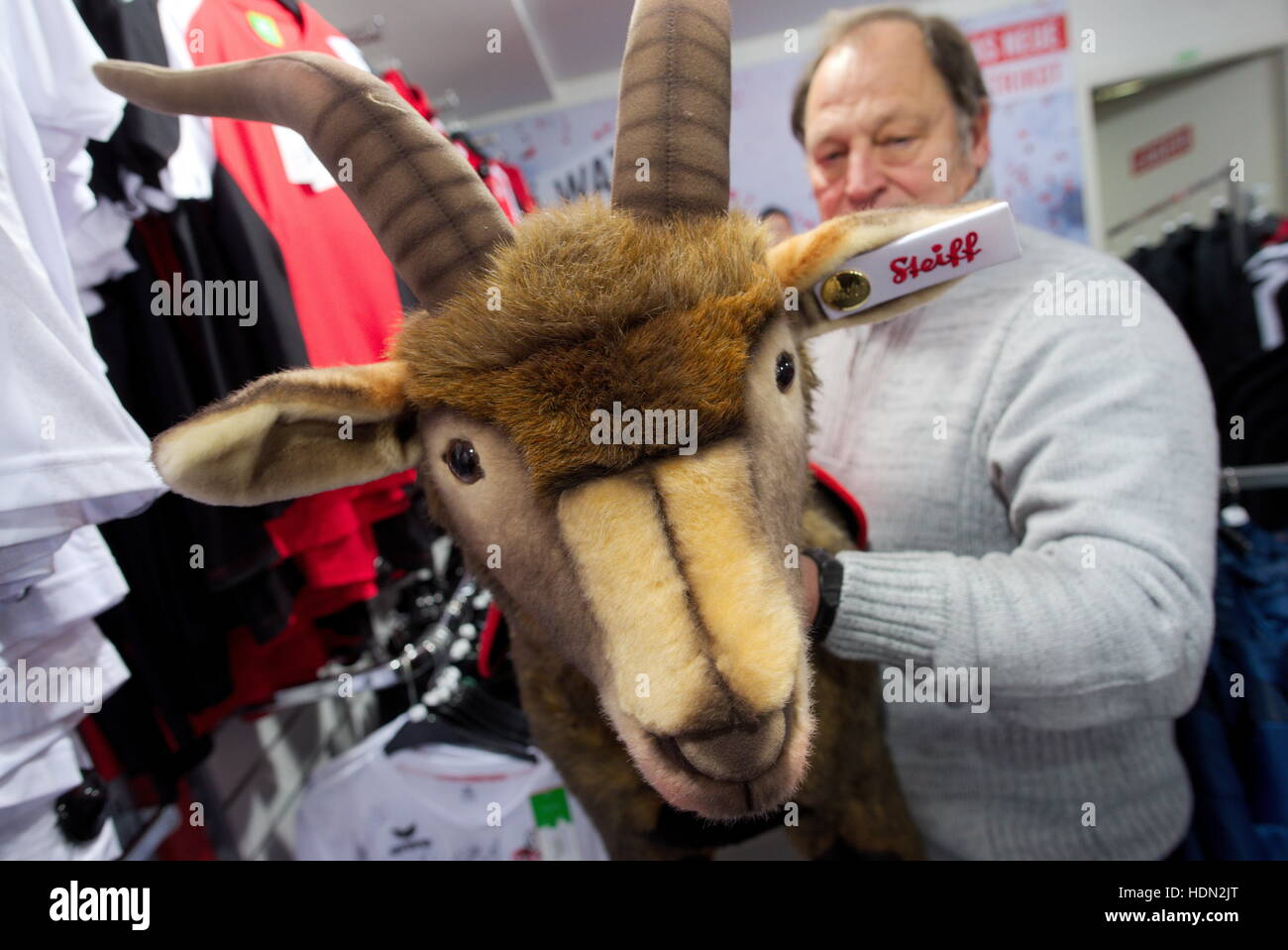 Cologne, Germany. 7th Dec, 2016. A fan looks at the life-sized plush toy of the club mascot of 1. FC Cologne, the - Stock Image
