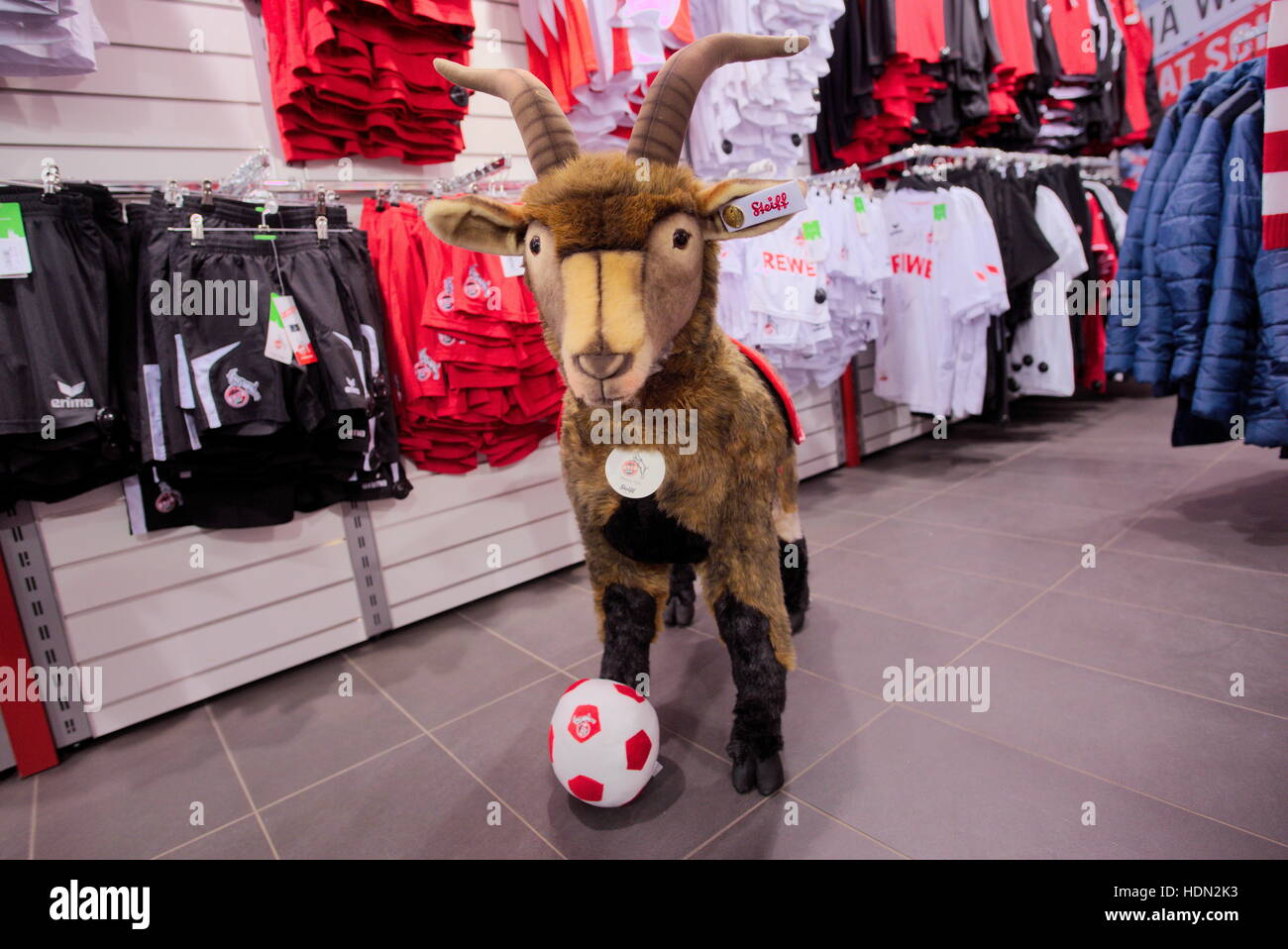 Cologne, Germany. 7th Dec, 2016. The club mascot of 1. FC Cologne, the billy goat Hennes VIII, can be bought as - Stock Image
