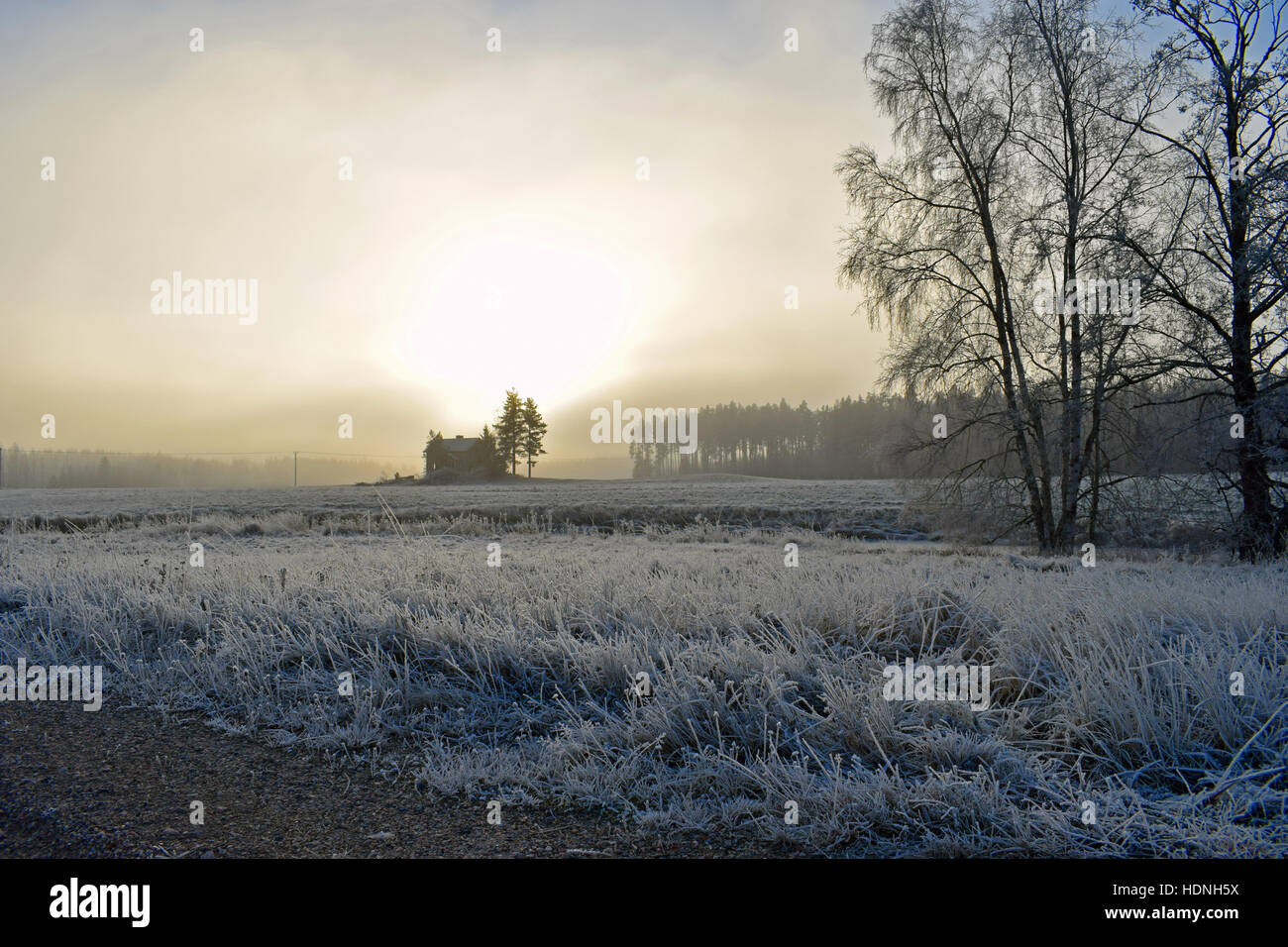 Beautiful cold landscape with frosty grass, deserted house and sun shining through clouds and fog. - Stock Image