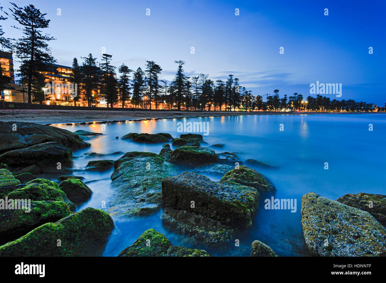 Green water plants covered boulders at Sydney northern beaches Manly beach at sunset.Popular tourist destination - Stock Image