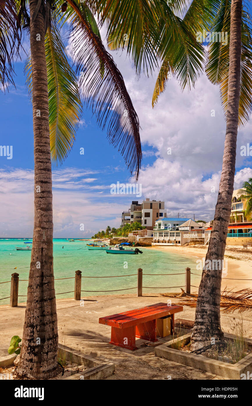 Seafront at St. Lawrence Gap, Barbados, Caribbean. - Stock Image