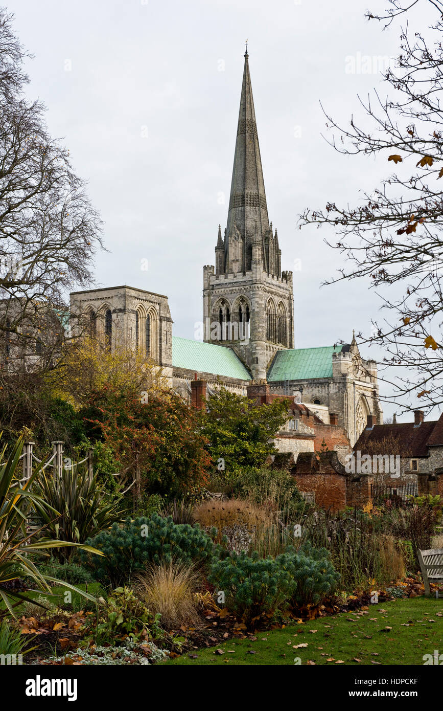 The spire of Chichester Cathedral looking for the gardens in winter and framed by leafless trees, West Sussex, November - Stock Image