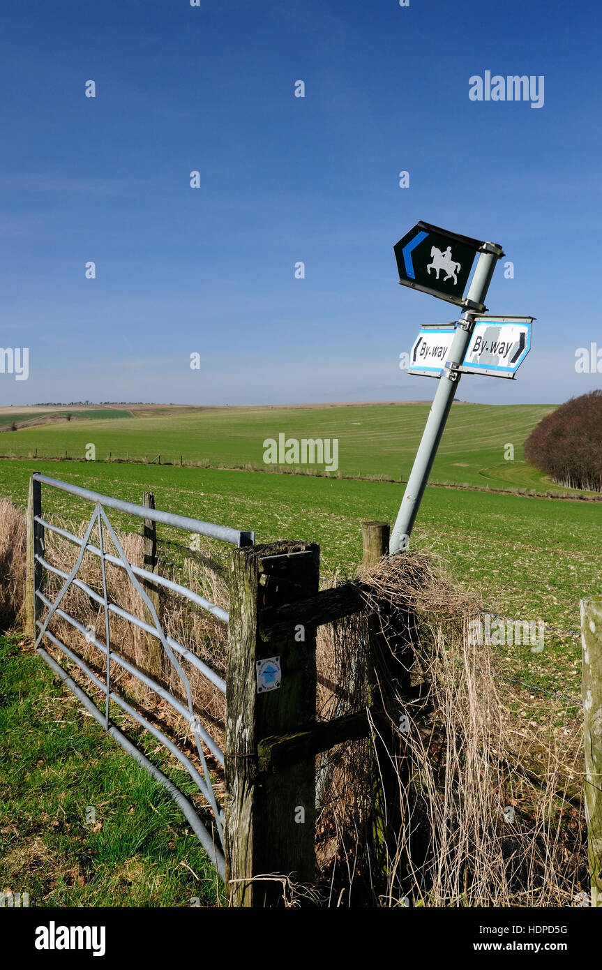 A leaning signpost at a byway/bridleway junction, plus a waymarker on the gate-post for the Three Downs Link horse - Stock Image