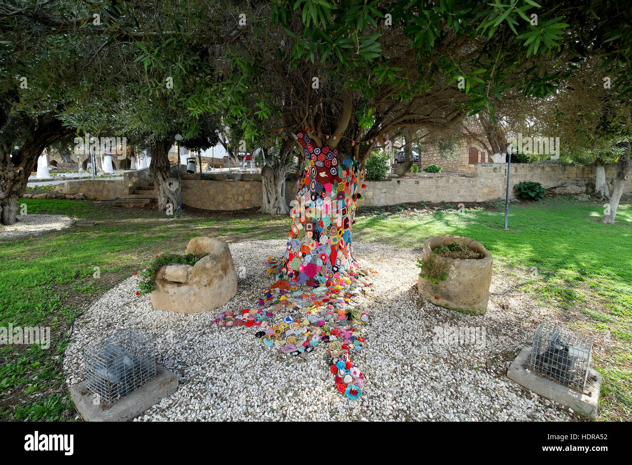 A tree decorated by knitted woollen flowers in a park gladstonos  in Paphos old town centre. - Stock Image