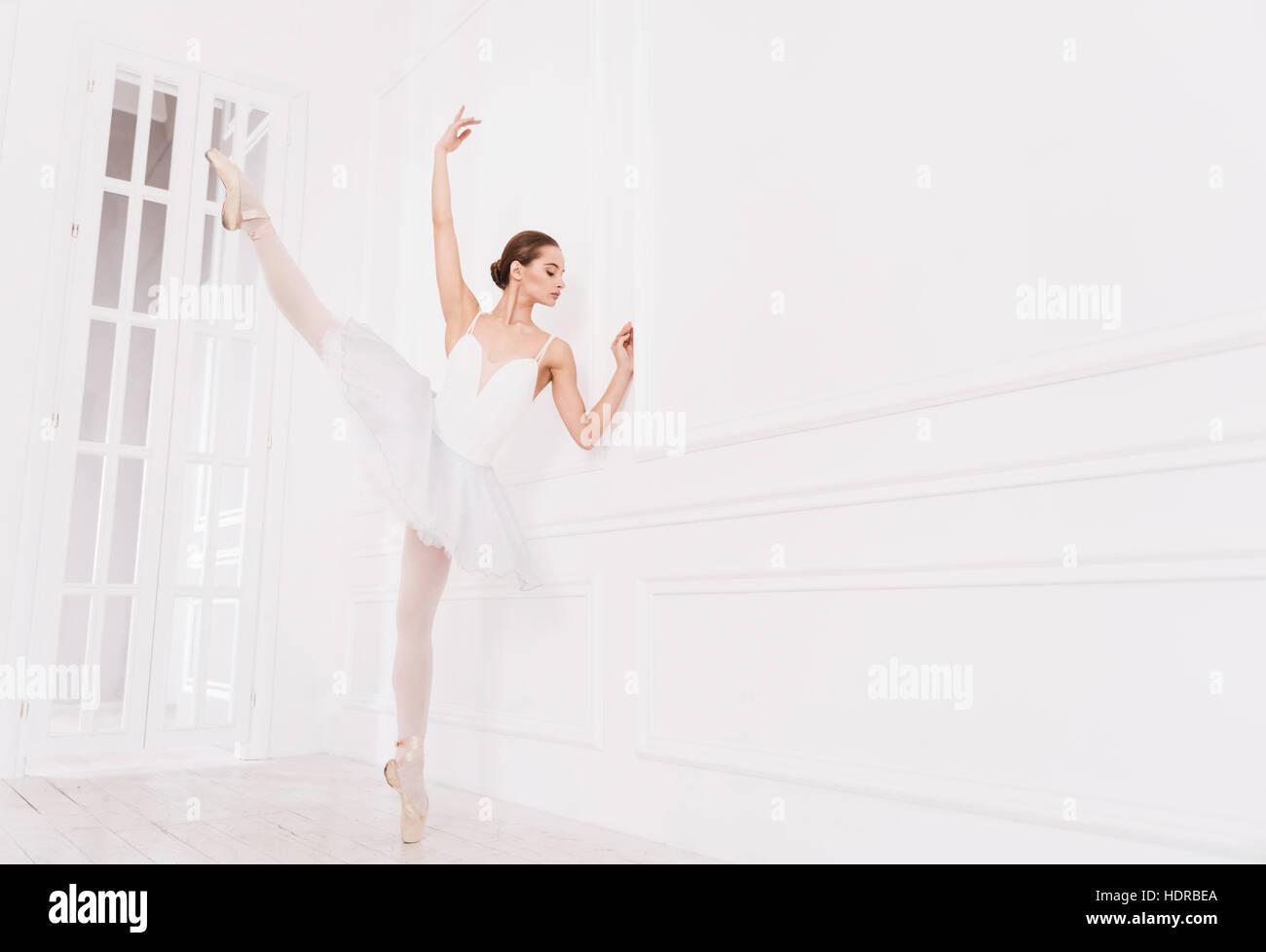Elegant ballet dancer doing extension exercises - Stock Image