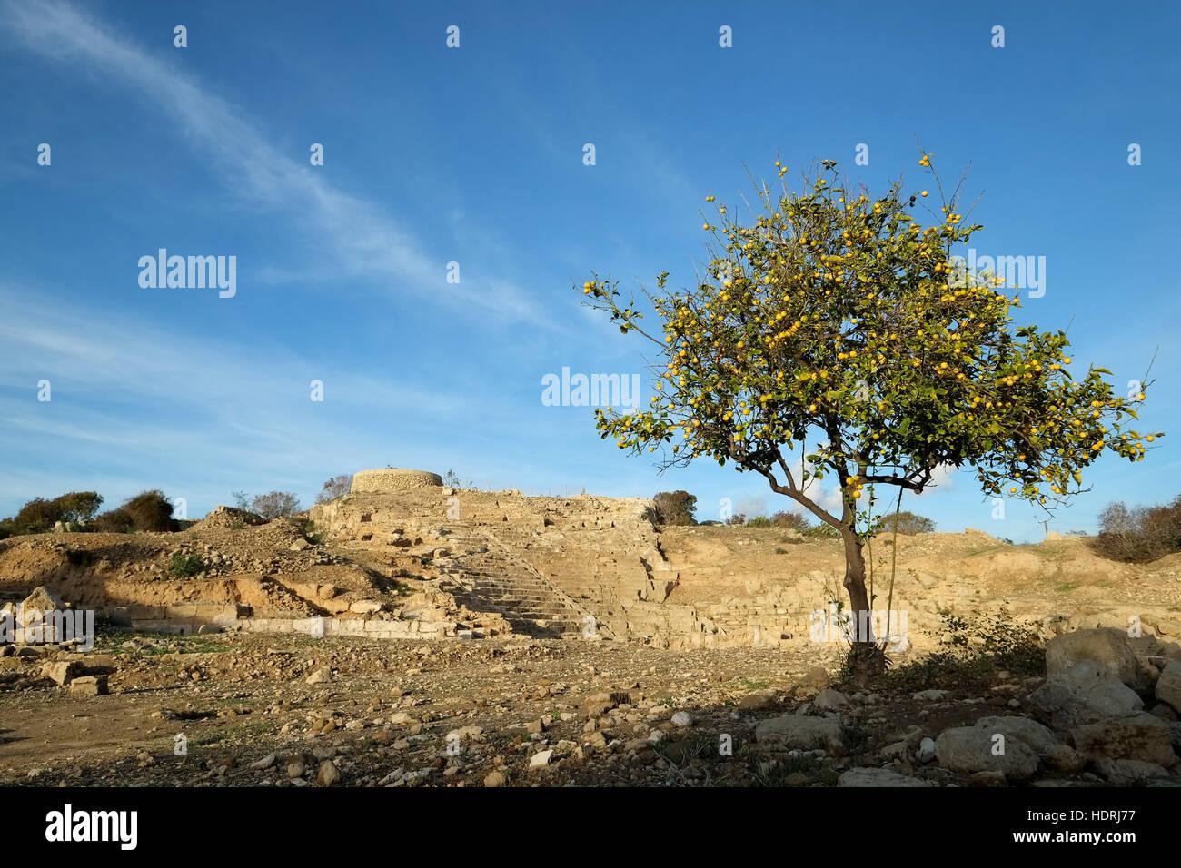 Ancient Hellenistic Amphitheatre in Paphos, Cyprus Stock Photo