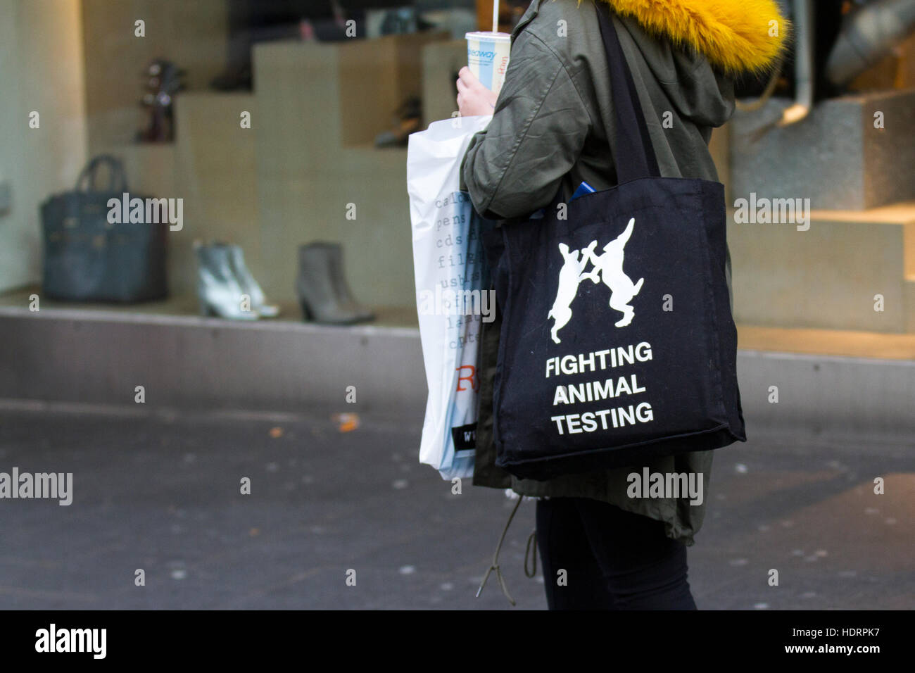 Southport, Merseyside, UK. 24th November, 2018. Vegan Woman in town centre against science, medicine, animal welfare, - Stock Image
