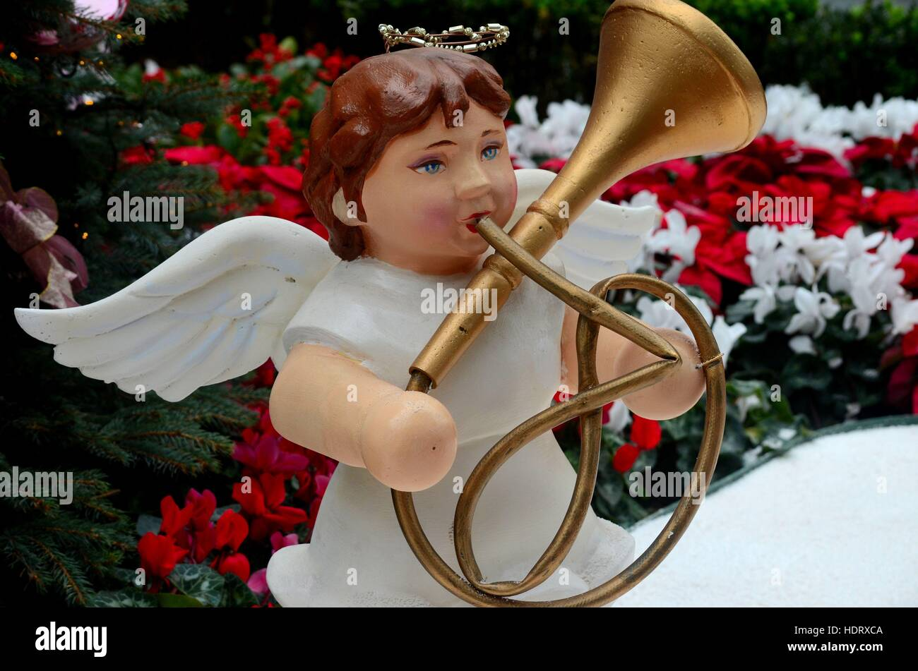 Christmas angel statue plays French horn trumpet brass music instrument - Stock Image