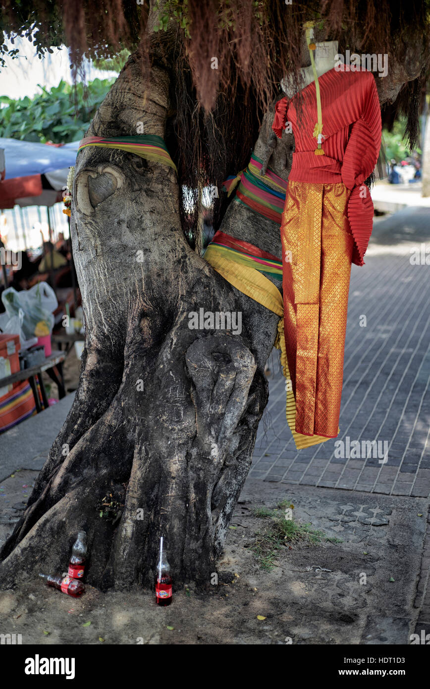 Sacred tree, believed to possess the spirit of a deceased female, adorned with traditional dress and soft drinks. - Stock Image