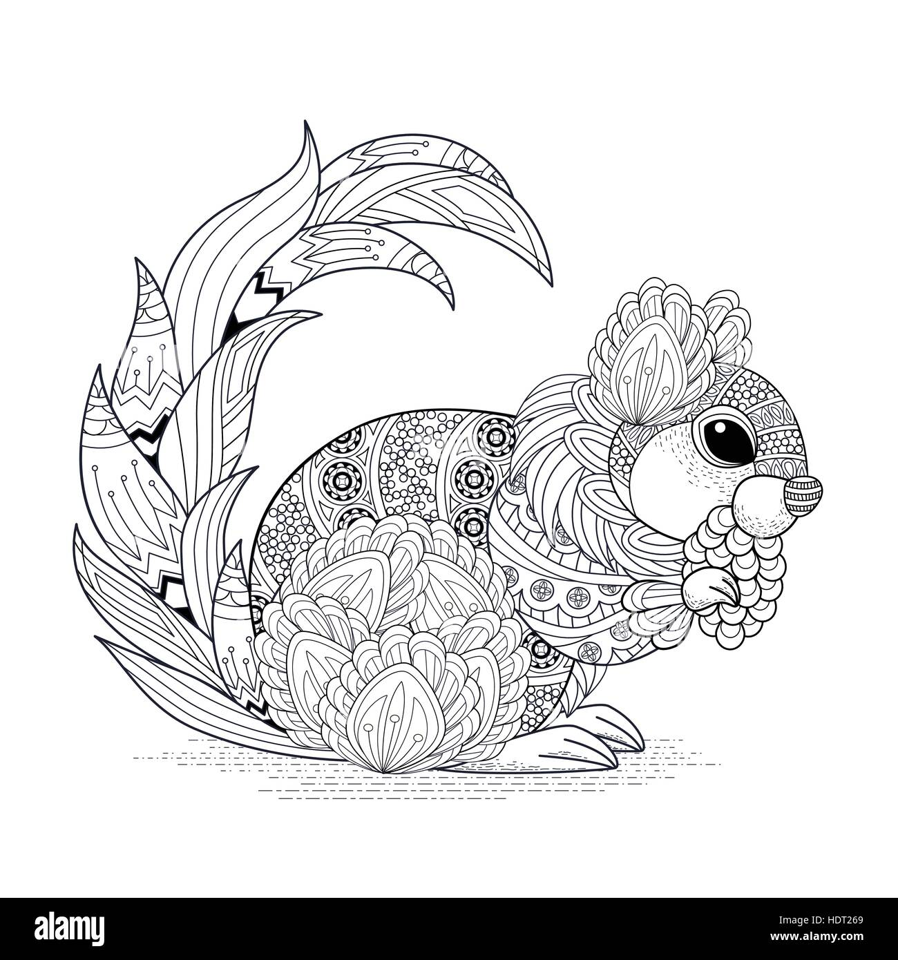 Lovely Squirrel Coloring Page In Stock Photos & Lovely Squirrel ...