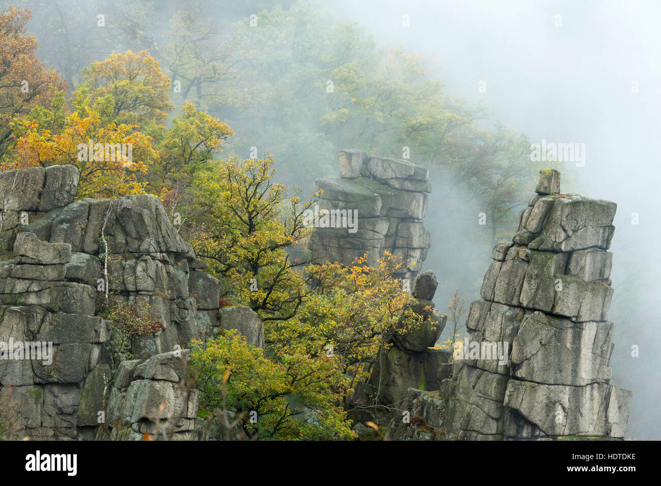 Rock spires in fog, Harz National Park, Saxony-Anhalt, Germany - Stock Image