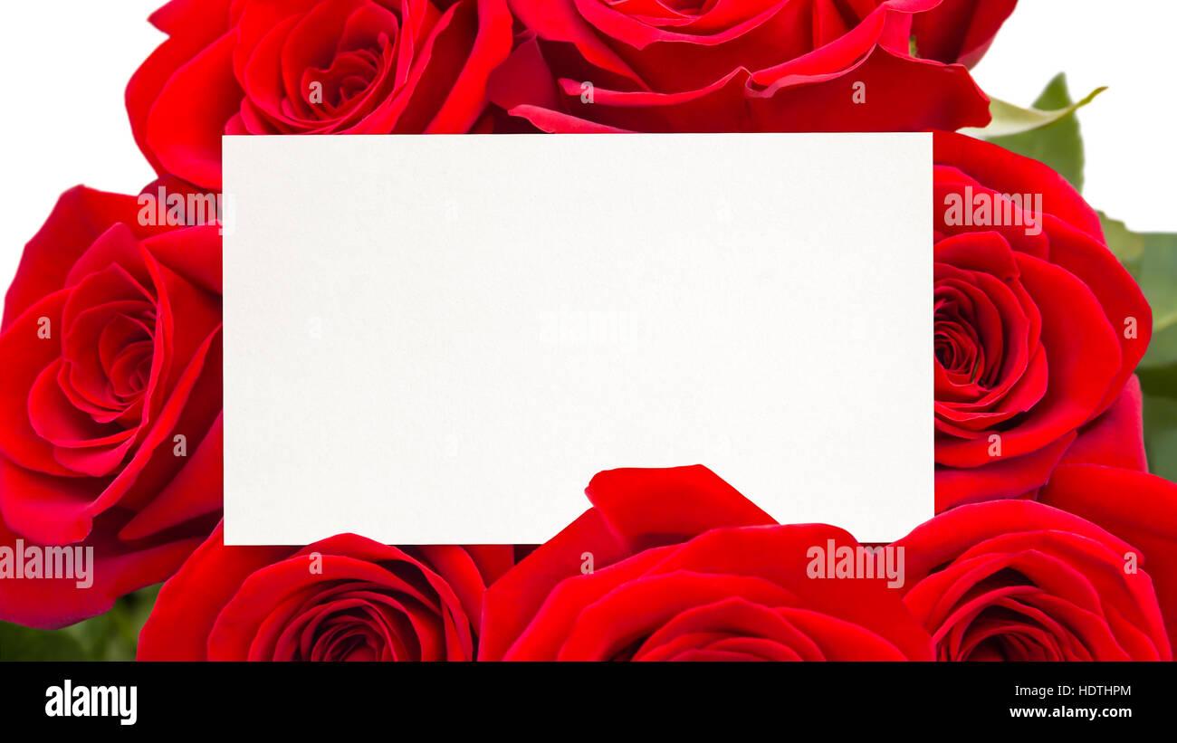 Rose invitation - Stock Image