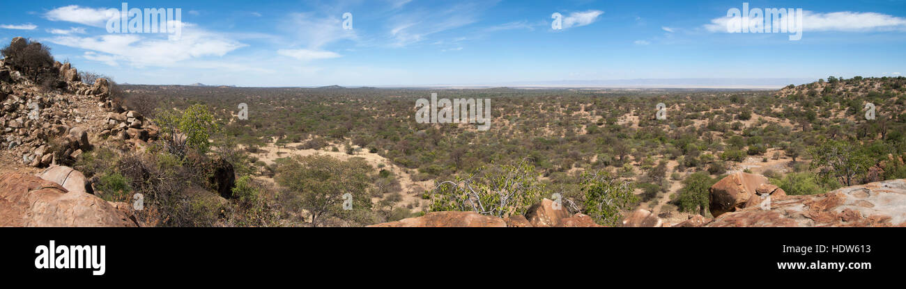 Panoramic view over bushland with Lake Eyasi in the far background, Manyara region, Tanzania - Stock Image