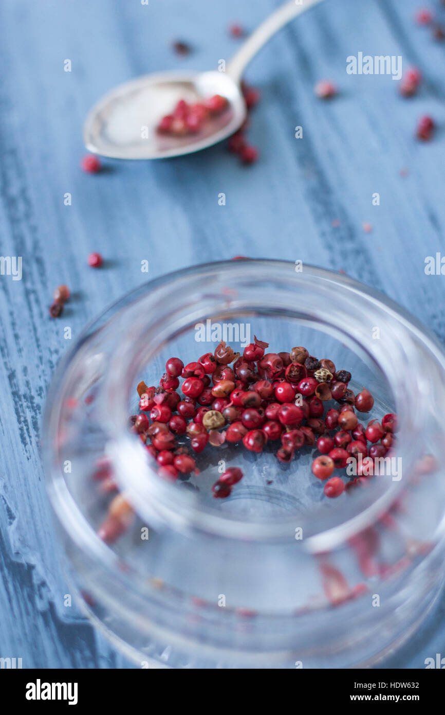 Pink pepper in glass jar on blue background - Stock Image