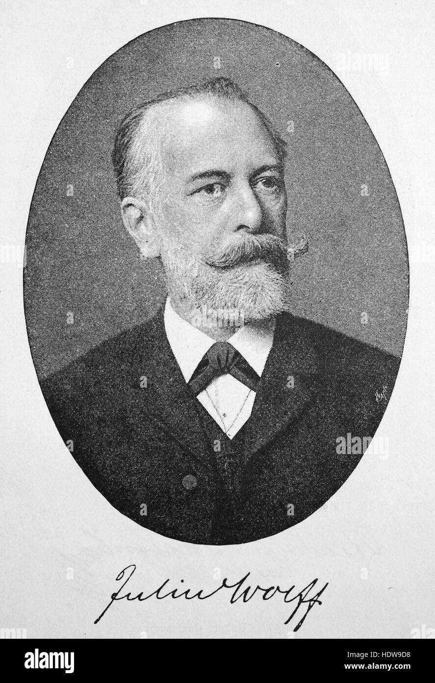 Julius Wolff, 1834 - 1910, German writer and poet, woodcut from the year 1880 Stock Photo