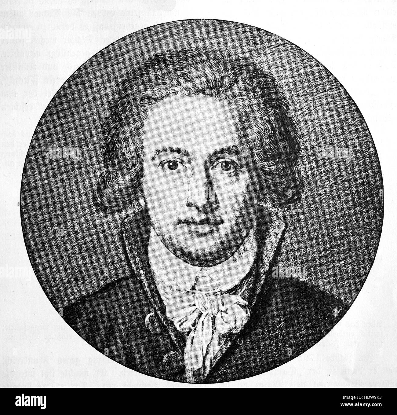 Johann Wolfgang von Goethe 42 years old, 1749-1832, a German writer and statesman, woodcut from the year 1880 - Stock Image