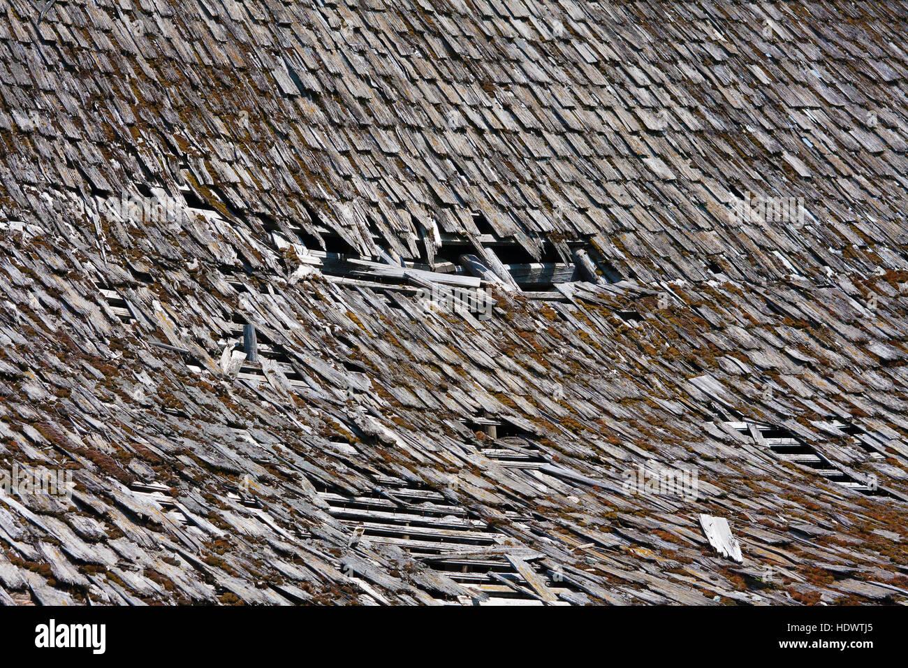 Tattered shingles on barn roof - Stock Image