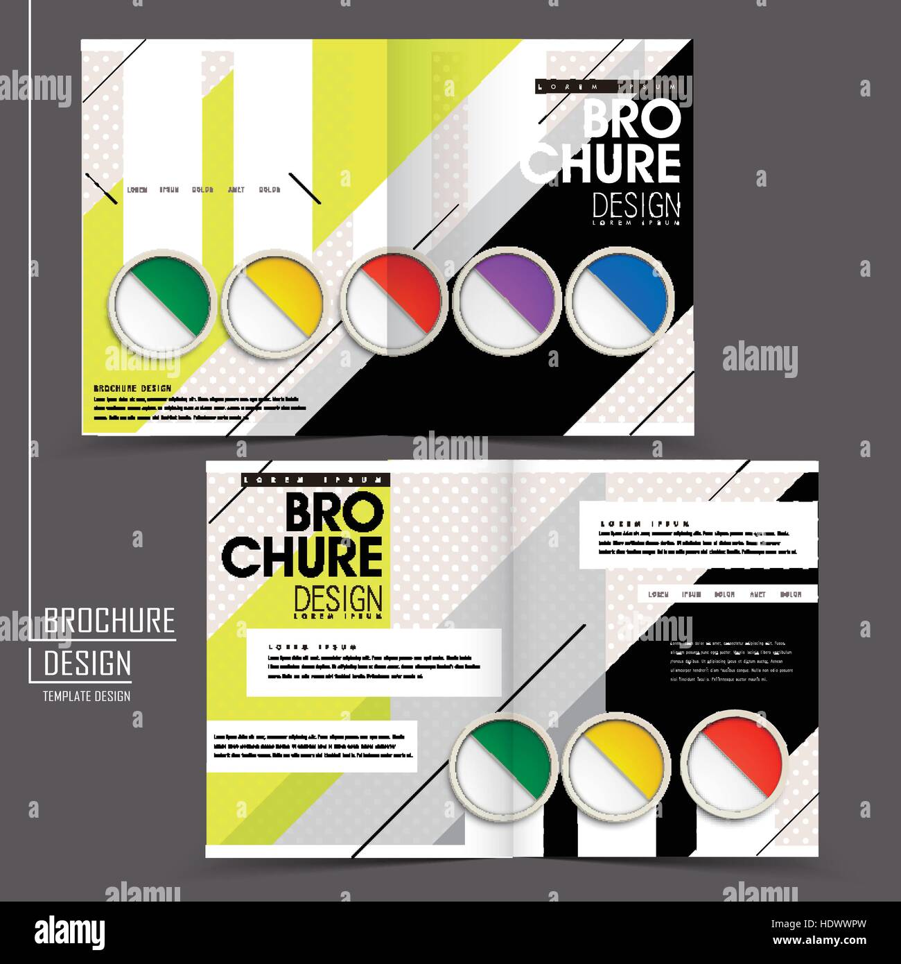 colorful half fold brochure template in modern design stock vector