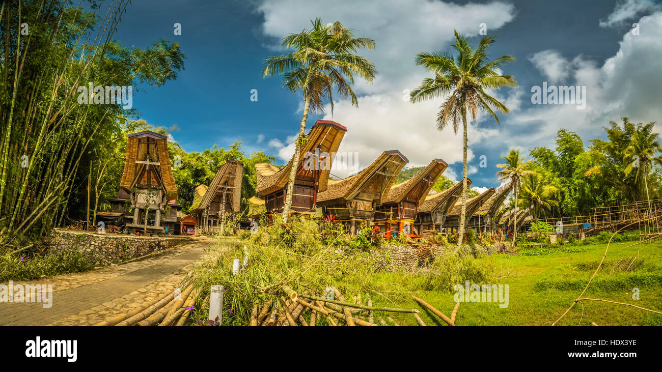 Photo of row of tongkonans surrounded by palms and greenery in Kete Kesu, Toraja region in Sulawesi, Indonesia. - Stock Image