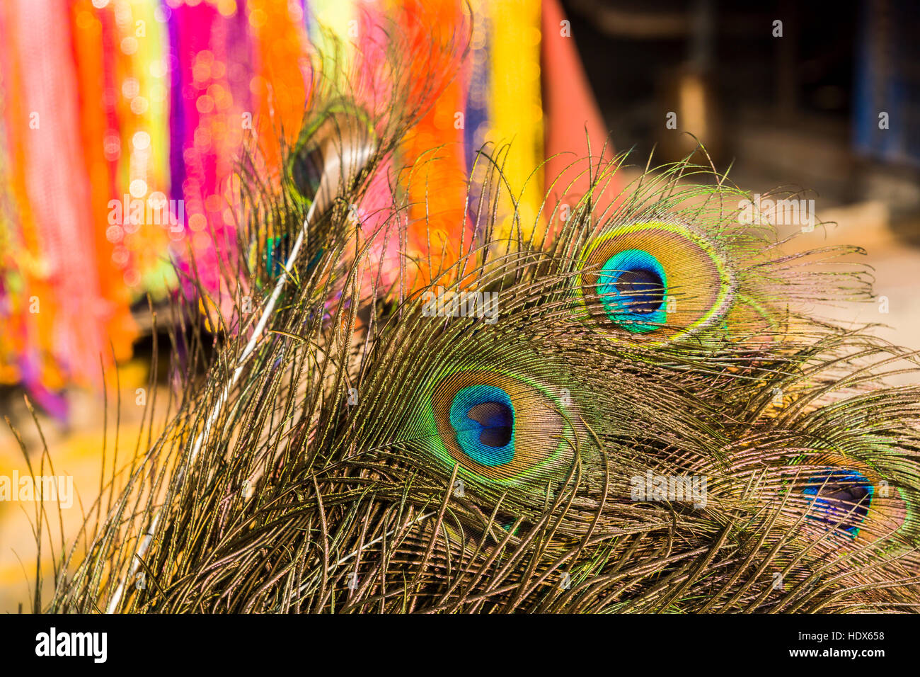 Peacock feathers for religious use are sold at Pashupatinath Temple - Stock Image