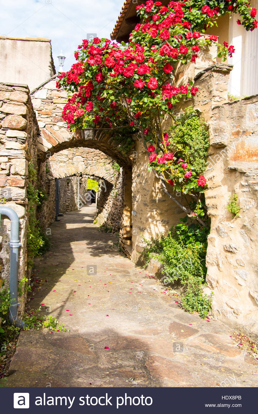 Medieval Village of Saint Martin de l'Arçon, Luberon, France, old architecture, residential houses, narrow street Stock Photo