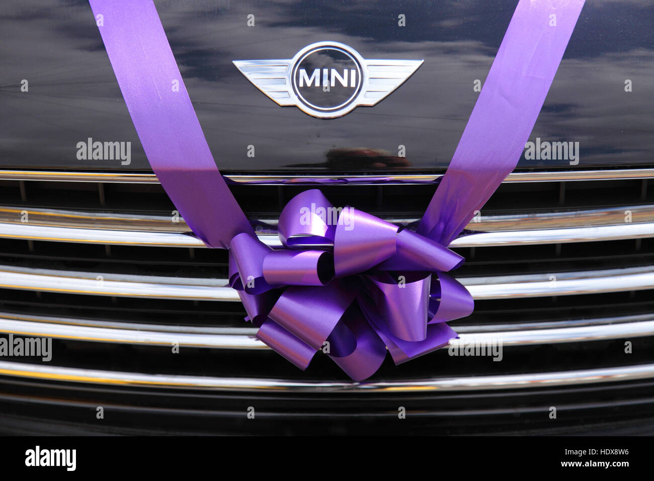 BMW Mini used as a wedding car, tied with a pink purple ribbon and bow over the radiator grill. - Stock Image