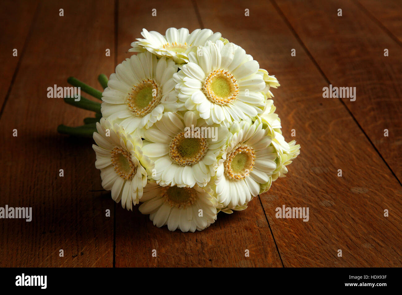 Cream gerbera wedding bouquet on an oak wooden floor. - Stock Image