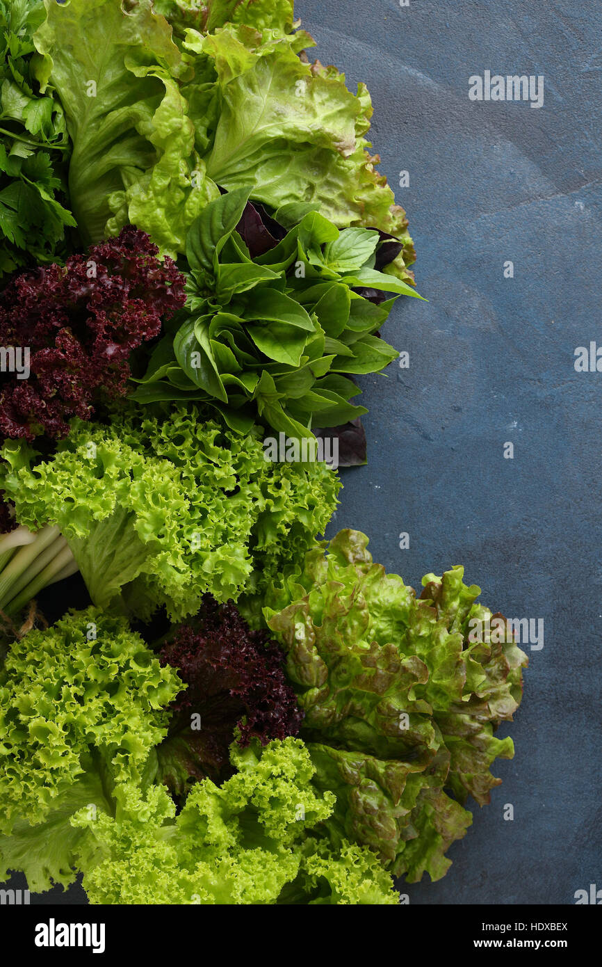 Blue food background with lettuce, basil - Stock Image