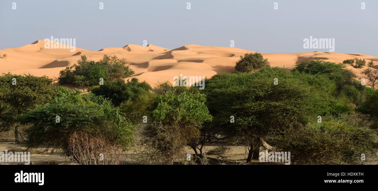 Sahara desert, Mauritania - Stock Image