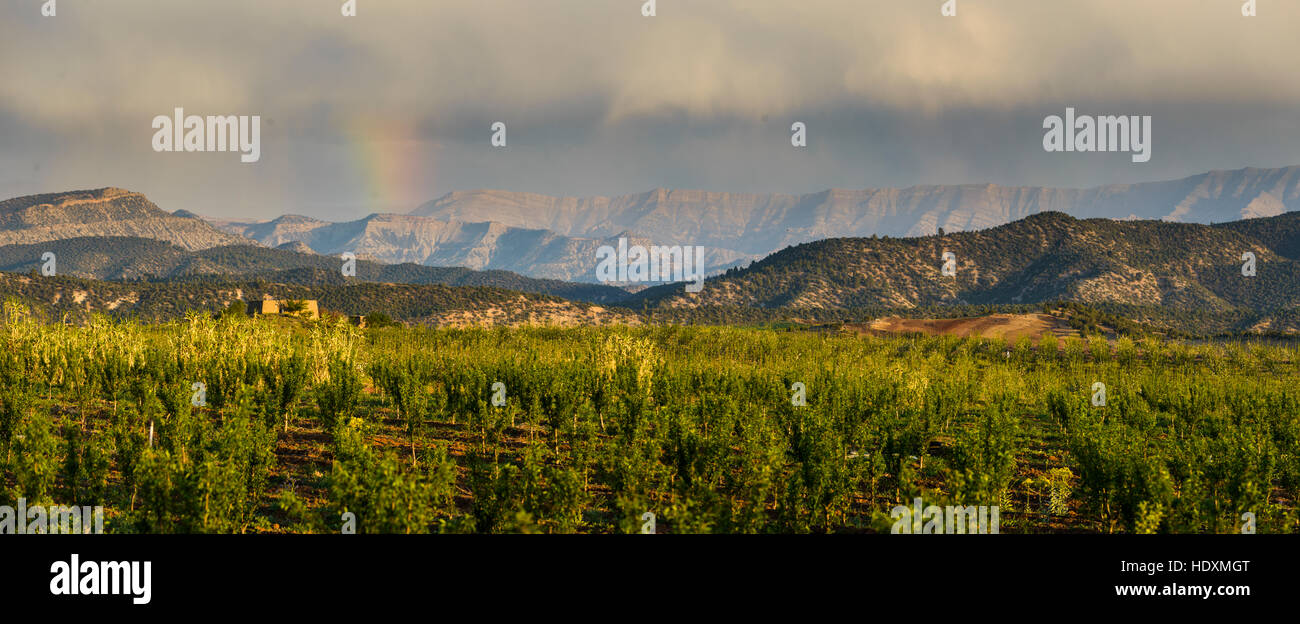 The middle-Atlas, Morocco - Stock Image