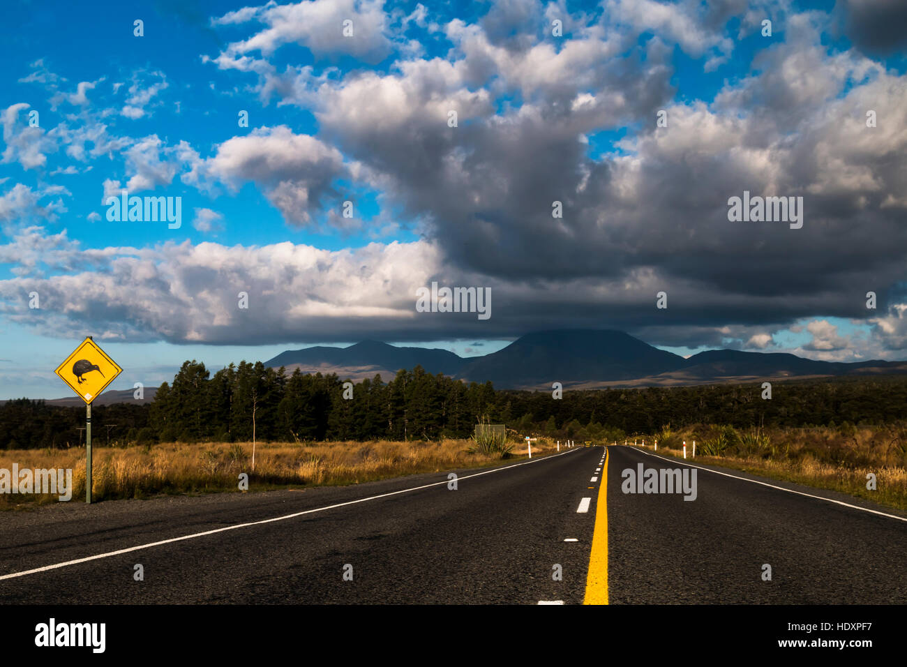 Road, Mount Ngauruhoe, North Island, New Zealand - Stock Image