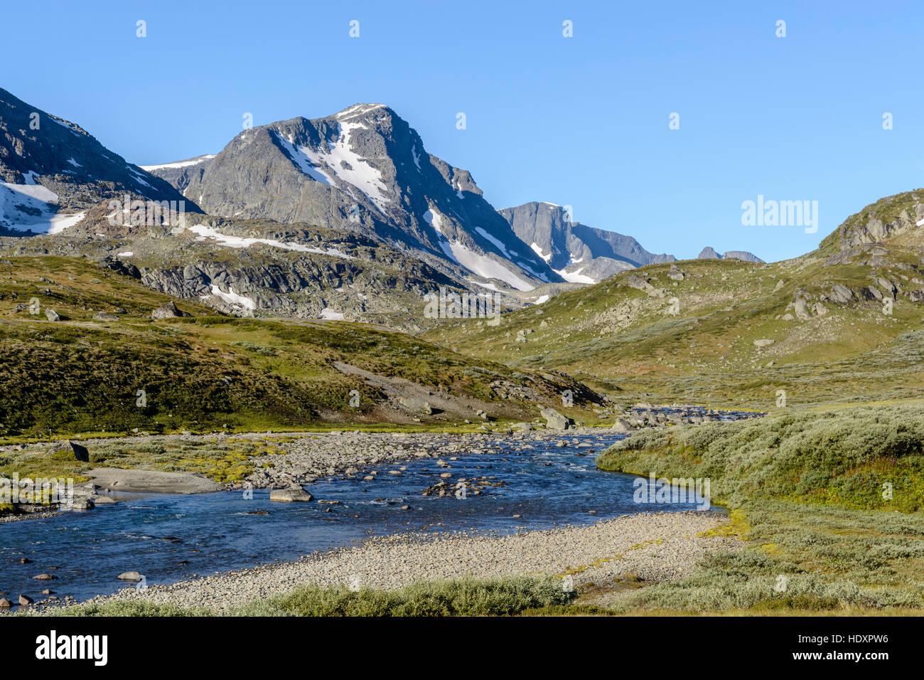 River in Leirungsdalen, Jotunheimen National Park, Norway - Stock Image