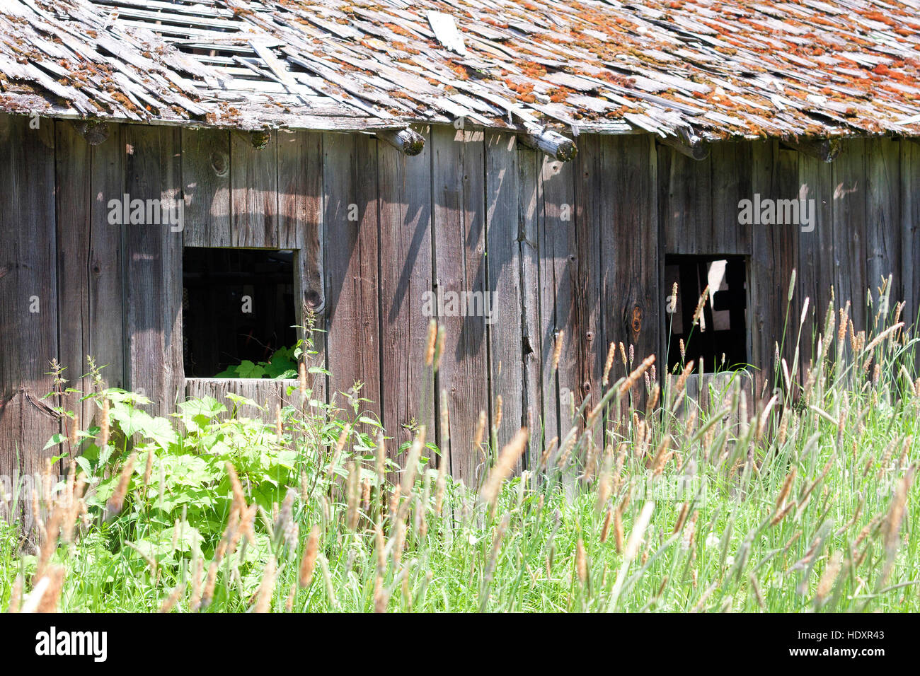 Old wooden barn shows signs of age - Stock Image