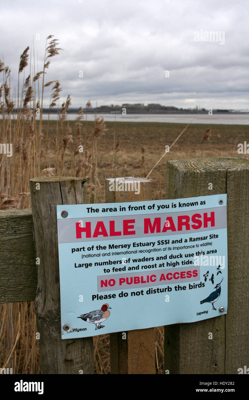 Hale Marsh An Important Overwintering Site For Waders and Wildfowl On the Mersey Estuary - Stock Image