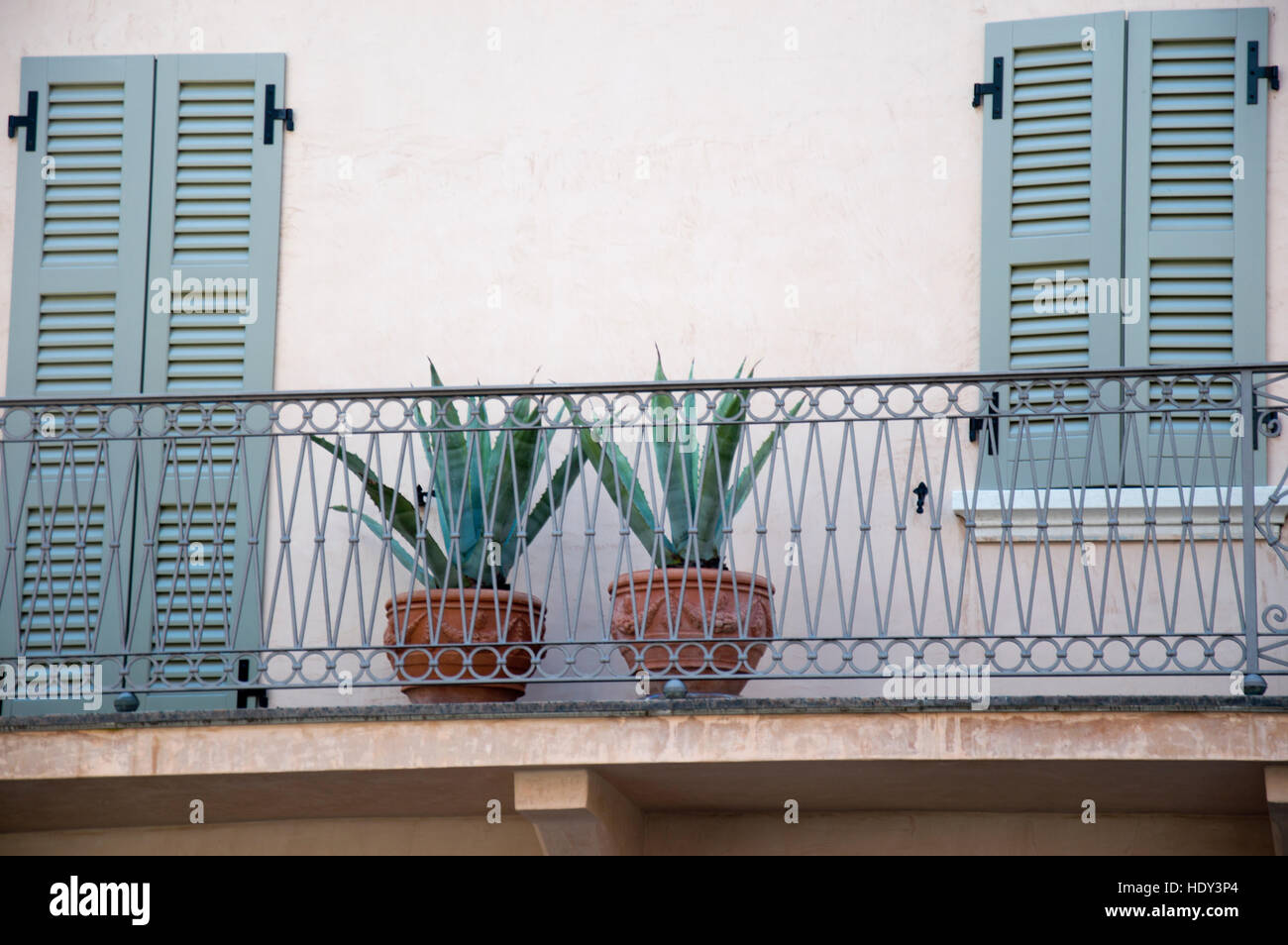 Agave plants growing in terracotta pots on a balcony in Peschiera del Garda, Italy - Stock Image