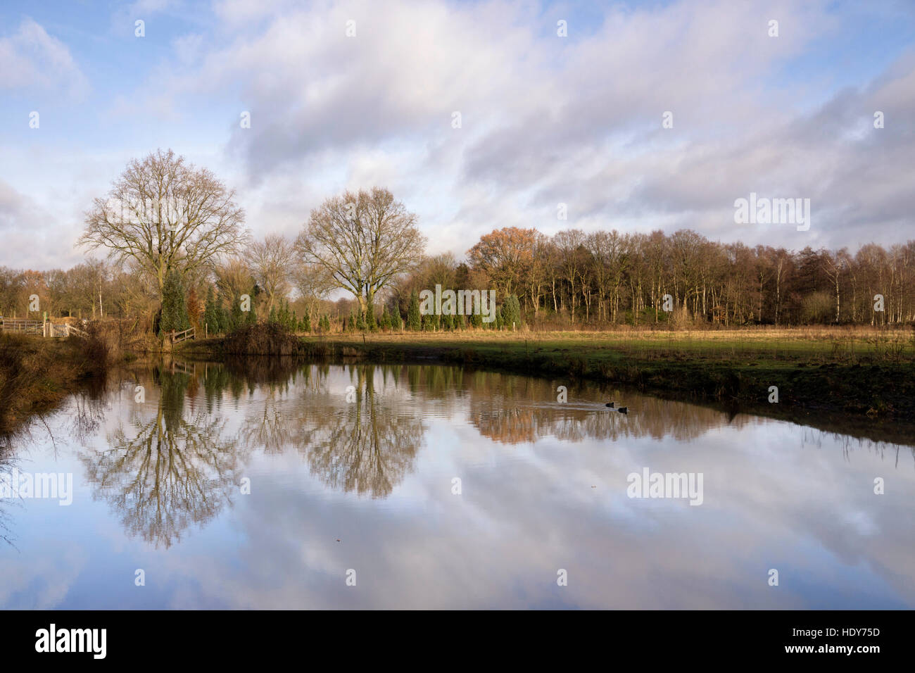 The West Brabant Waterline - Stock Image