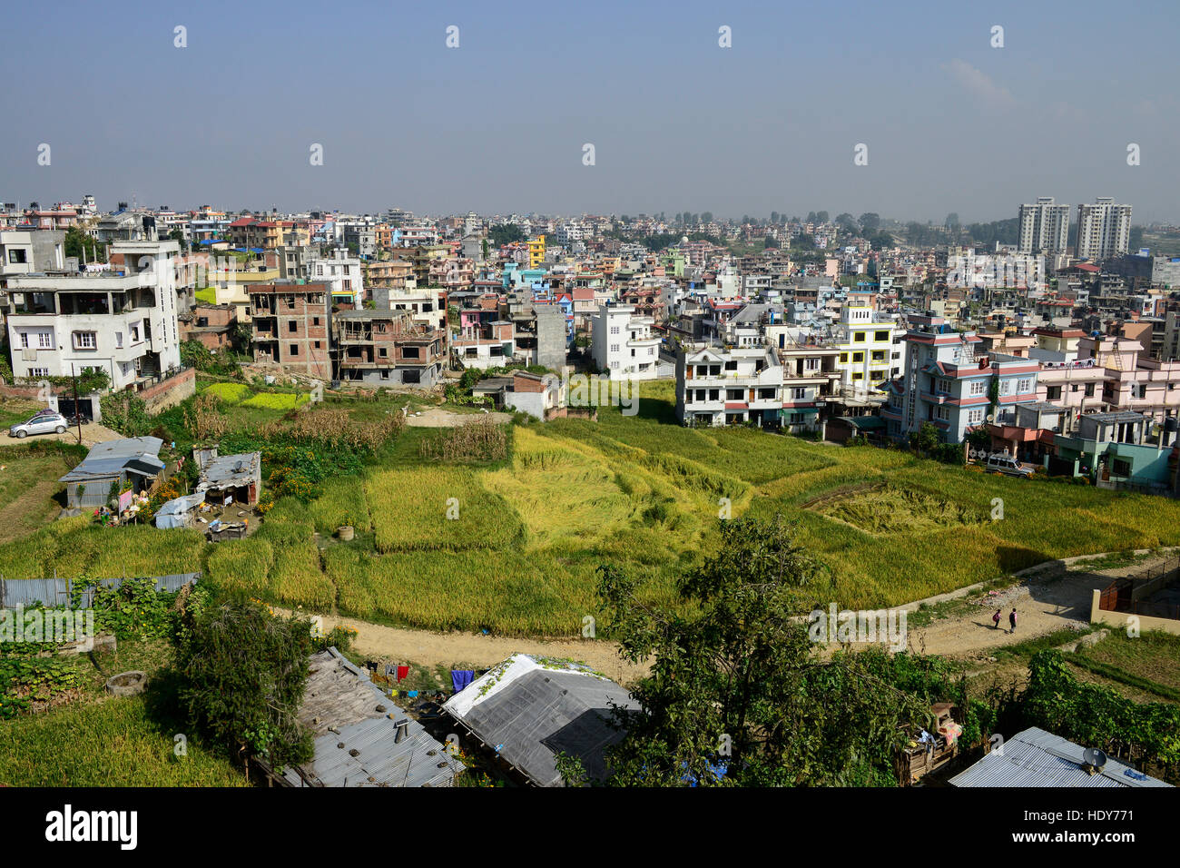 NEPAL Kathmandu, city growth, loss of agricultural fields, a remaining tin-shed hut and paddy fields / Staedtewachstum, - Stock Image