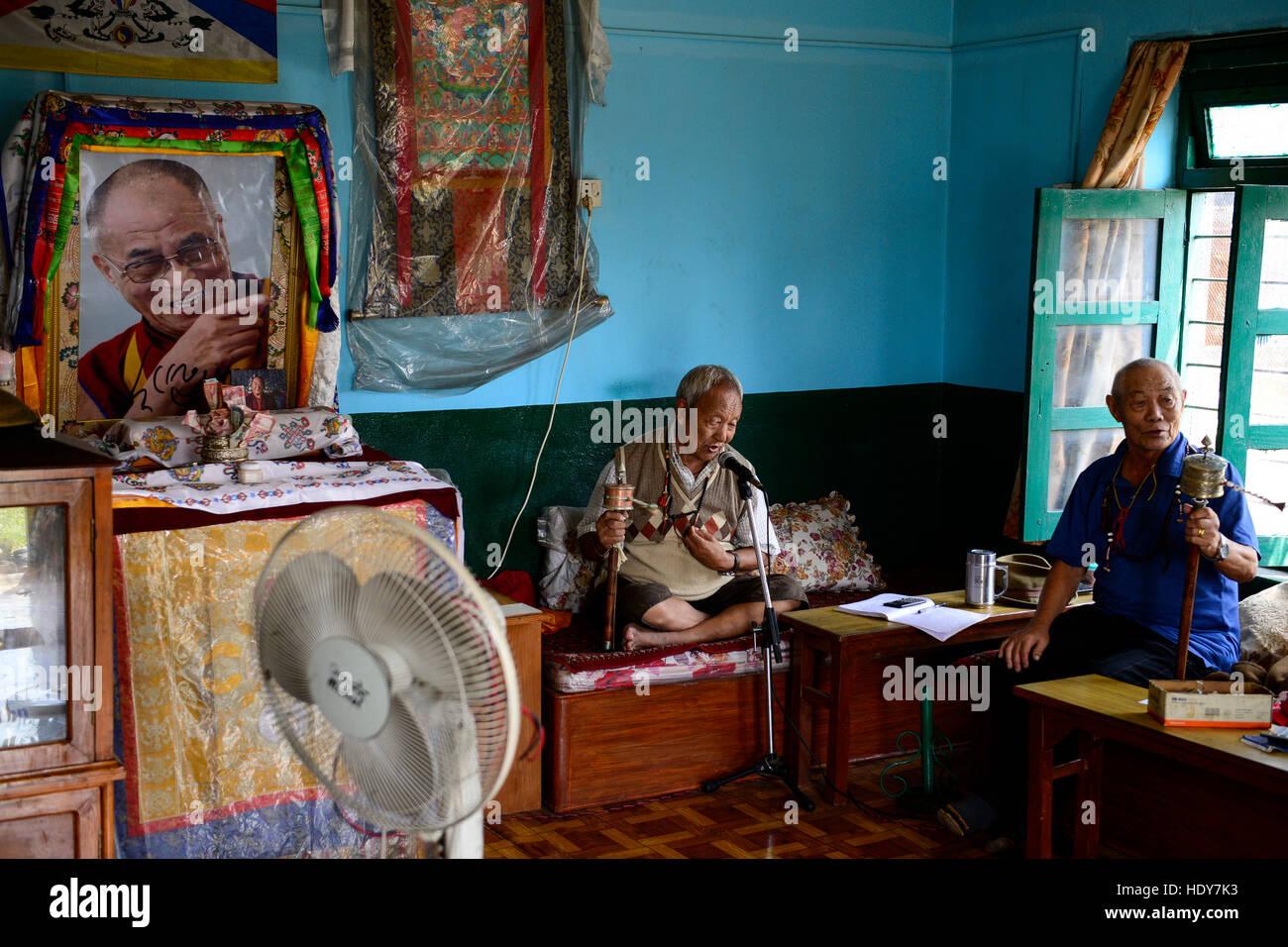 NEPAL Pokhara, tibetan refugee camp Prithvi, right side: retired tibetan freedom fighter Tashi Tahsi, 83 years old, - Stock Image