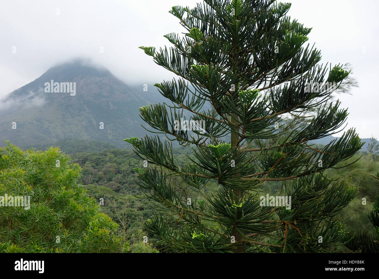 Lantau Peak, Lantau Island, Hong Kong, China - an area popular with hikers. - Stock Image