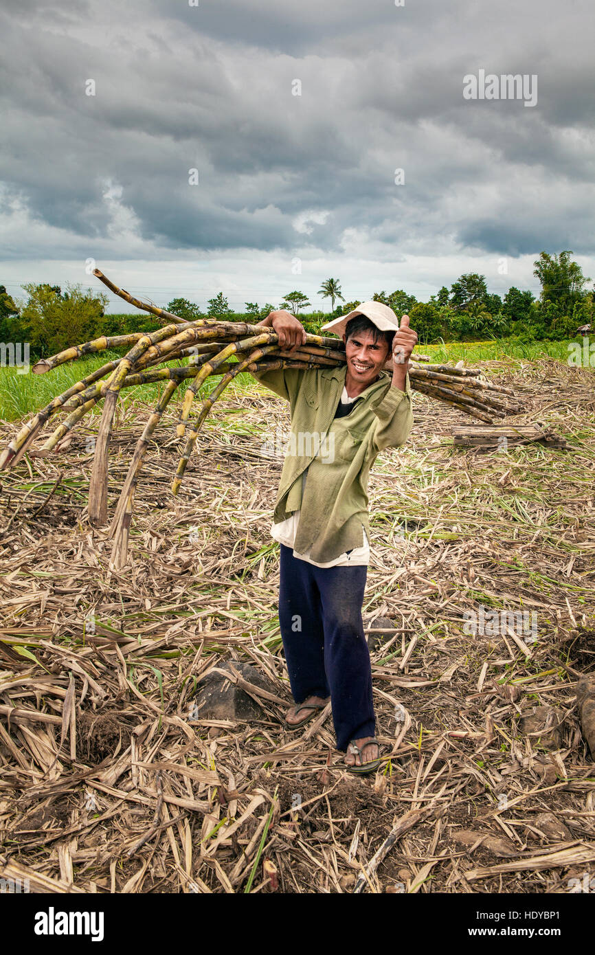 Portrait of a sugar cane field worker with a  shirt wrapped around his head for sun protection. Philippines. - Stock Image
