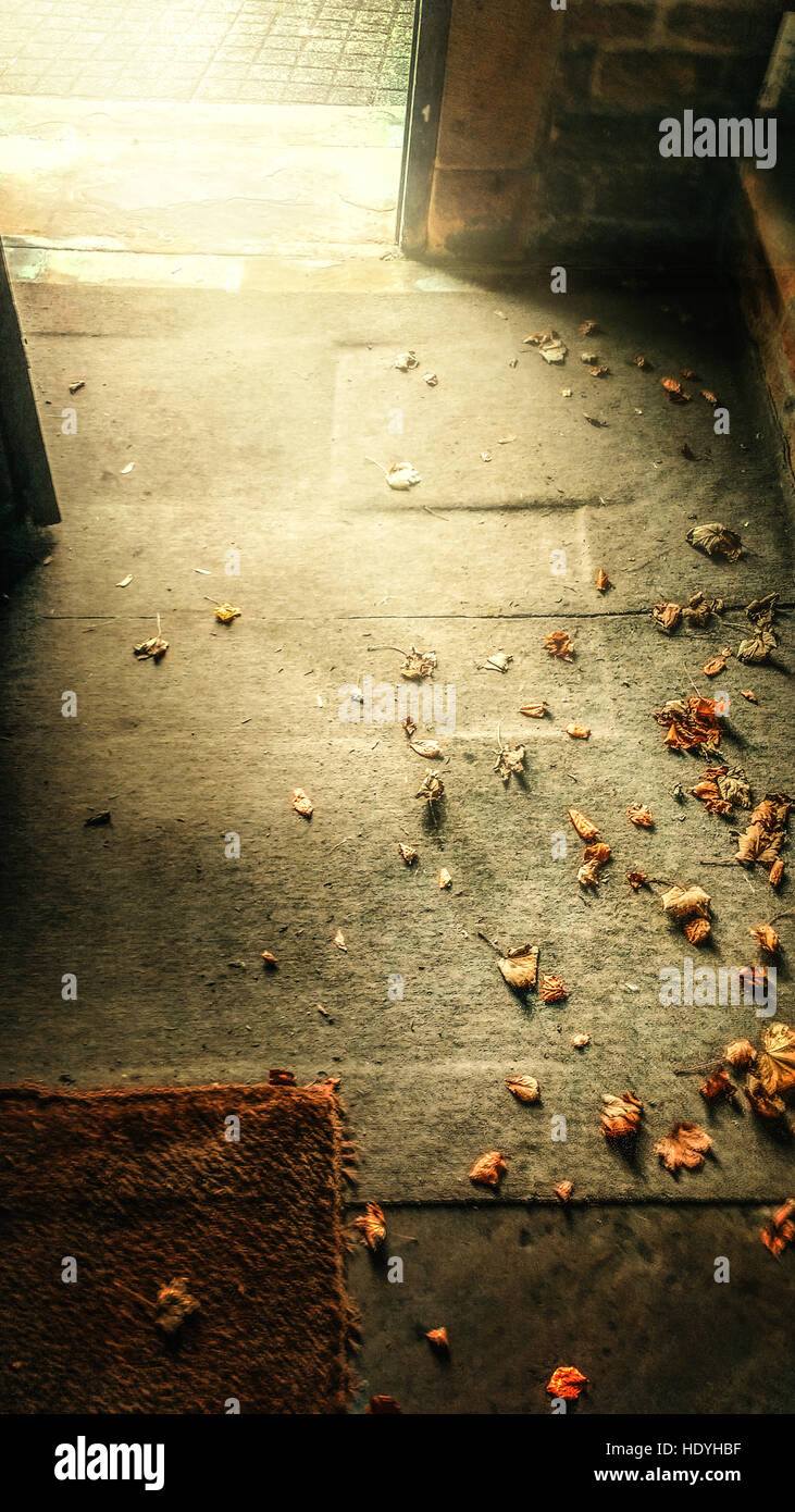 artistic image of the floor with leaves and opened door - Stock Image