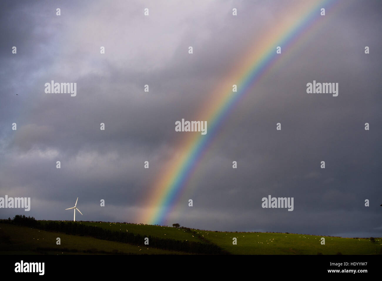 Aberystwyth Wales UK, Thursday 15 December 2016 UK weather: In a bright interval between showers a beautiful rainbow Stock Photo