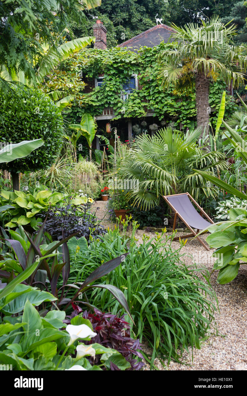 A gravel path leads through lush exotic foliage in a jungle themed Norwich garden - Stock Image