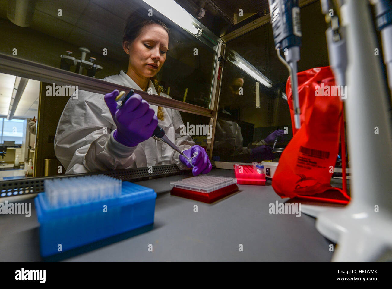 Marie Powell, general supervisor, Molecular Diagnostics, draws human biological samples before testing them for Stock Photo